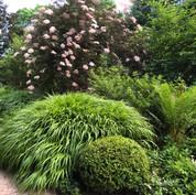 Hawthorne Court garden