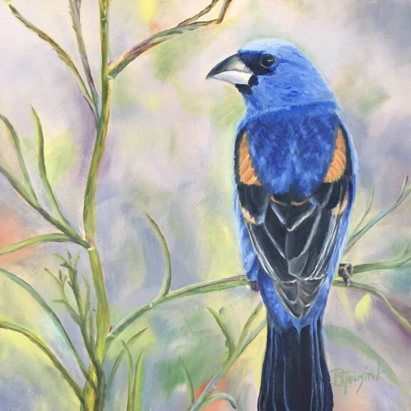 "Painting ""Blue Grosbeak"" by Barbara Teusink"