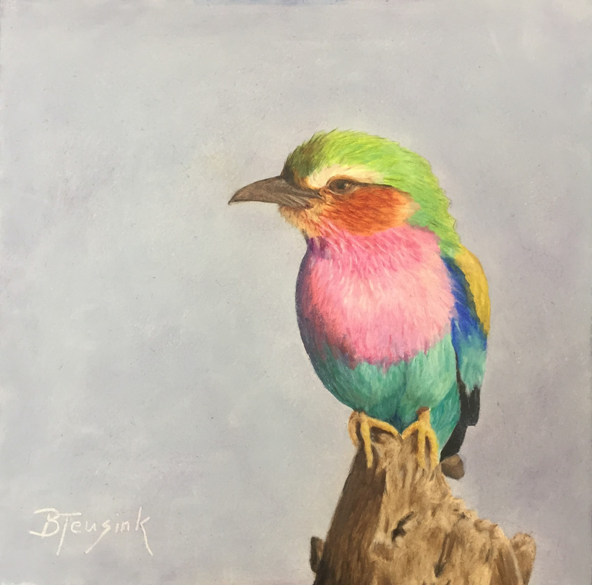 """Lilac Breasted Roller"""