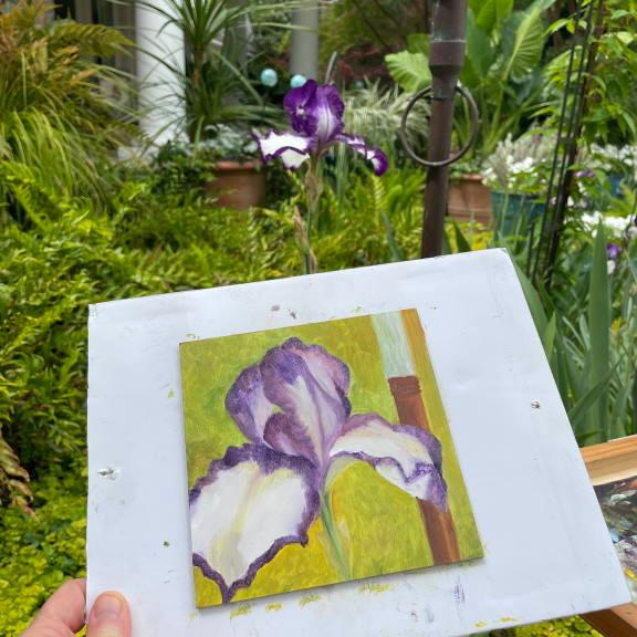 Photo of plein air painting of Iris
