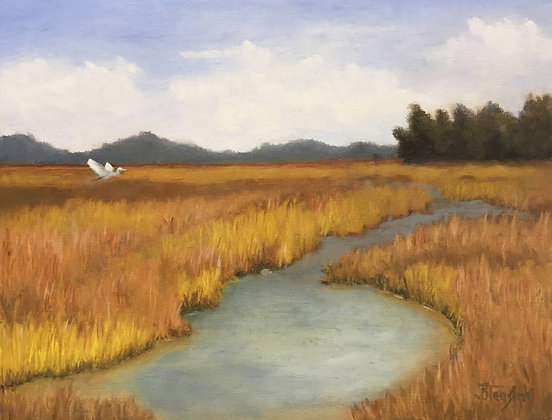 Georgia Salt Marsh