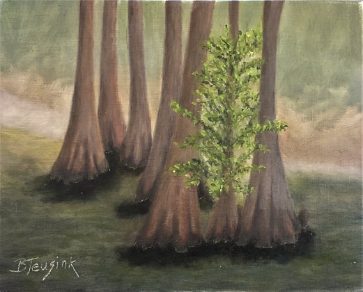 """Among the Cypress"""