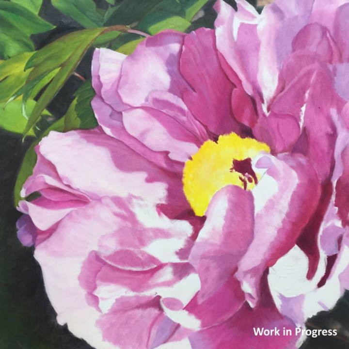 Photo of Pink Peony Painting in Progress