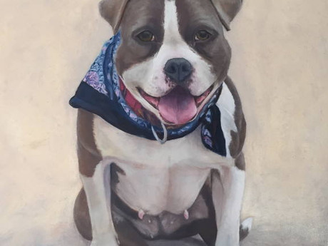 Good Karma - The Love of a Dog