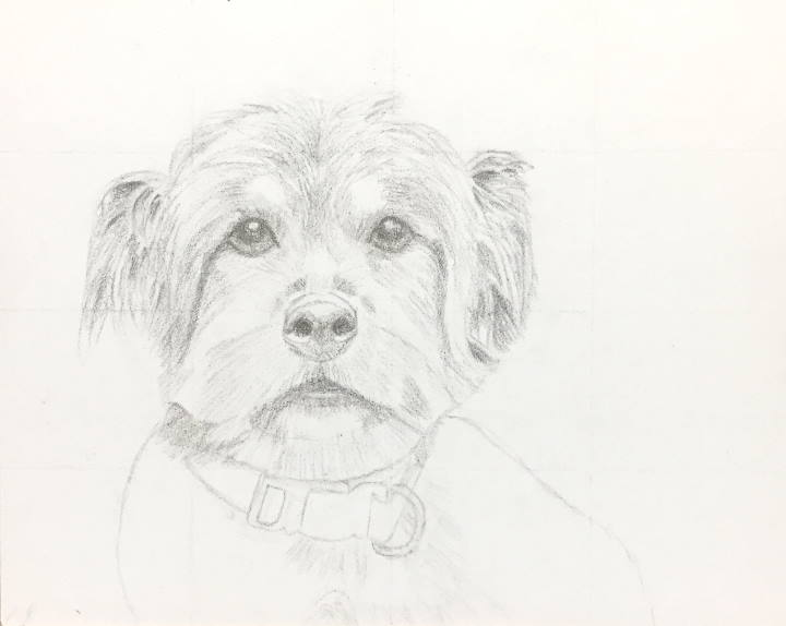 "Completed initial sketch ""Grady"""