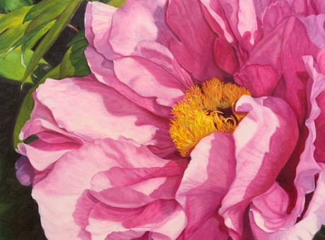 The Power of a Pink Peony