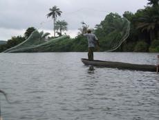 Fisherman NiguiNanou