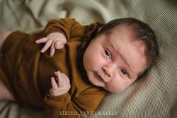 newbornshoot fotograaf maastricht