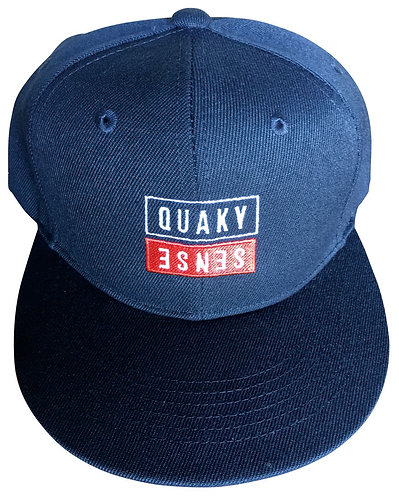 MY LIFE FLAT VISOR CAP 【NAVY】
