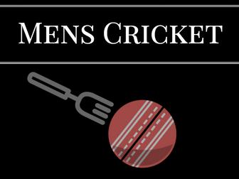 Satire on Office Cricket