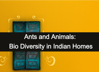 Ants and Animals: Bio Diversity in Indian Homes
