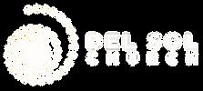DSC_logo white.png