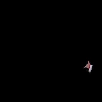 logo%20black-01_edited.png