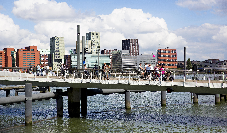 The Rotterdam waterside