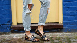 House of Spring Loafers