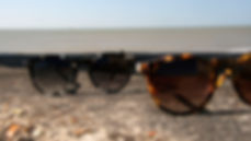 Pala Sunglasses Asha Black Tortoiseshell and Asha Tortoiseshell styles