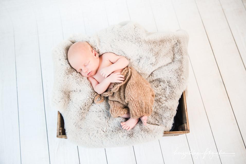 Newborn Harald Leithner-19-Bearbeitet.jp