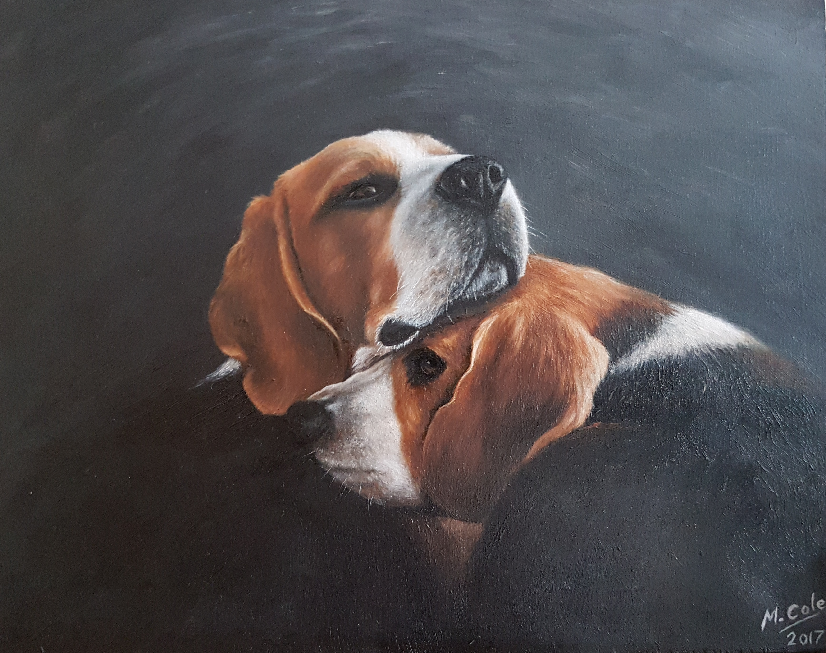 Beagles - SOLD
