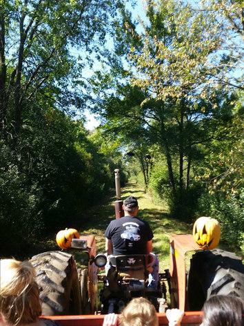 Down_on_the_farm_tractor.jpg