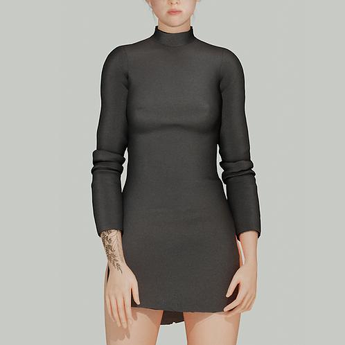 Skinny Turtleneck Dress