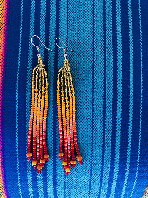 Chakira Earrings