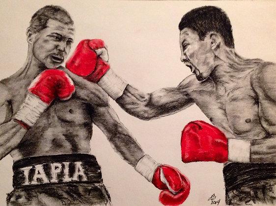 Tapia vs Ayala
