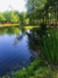 JPEG image-4A2414954BD5-23.jpeg