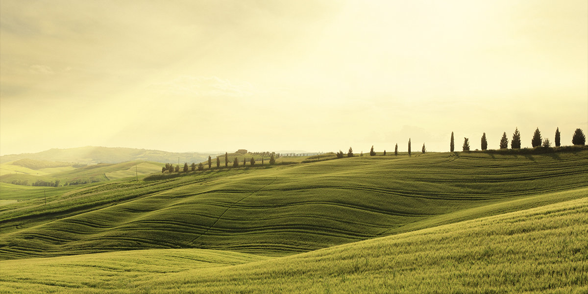 Box TOSCANA Sweet: On the rolling hills