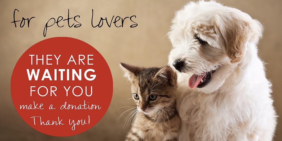 BOX Pets lovers