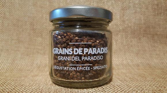 Grains de paradis (Maniguette) 58 gr