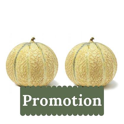 Melon Bio, par 2 ~ 1,300 kg par melon