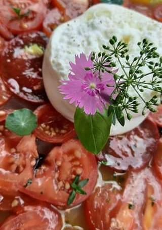 La salade mixte de tomate et burata crémeuse