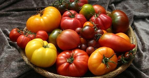 Tomates ancienne, mixe de plusieurs variétés, les 500 gr