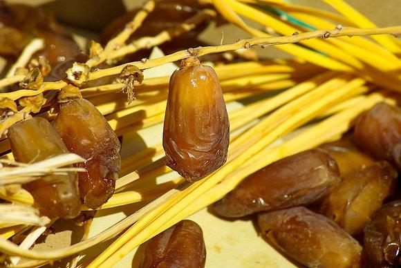 Dattes Deglet Nour en ravier par 250 gr