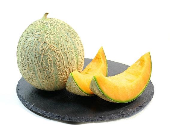 Melon Bio, la belle pièce ~ 1,300 kg