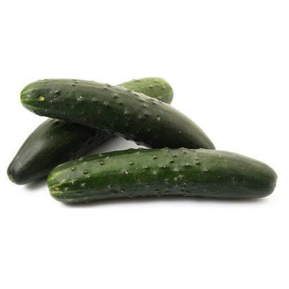 Concombre Noa x 2 pièces