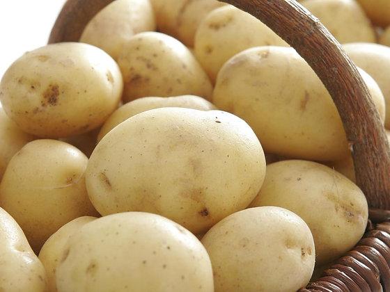 Pomme de terre nouvelle, le kg