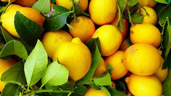 Citron feuille 3 pièces  ~ 500 g