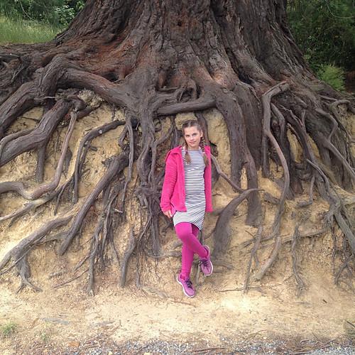Botanická záhrada na Novom Zélande v meste Dunedin