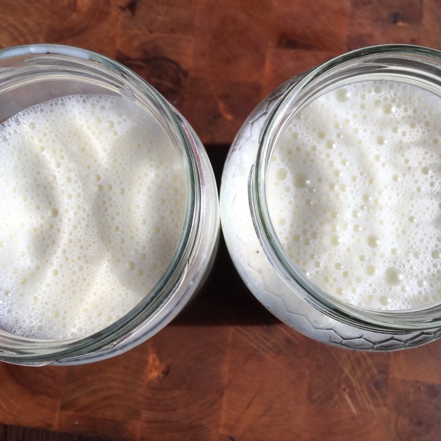 jogurt domáci