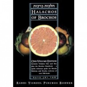 Halachos of Brochos