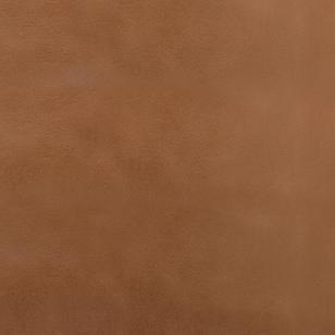 lion brown 030