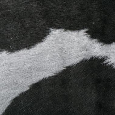 gray hair 036