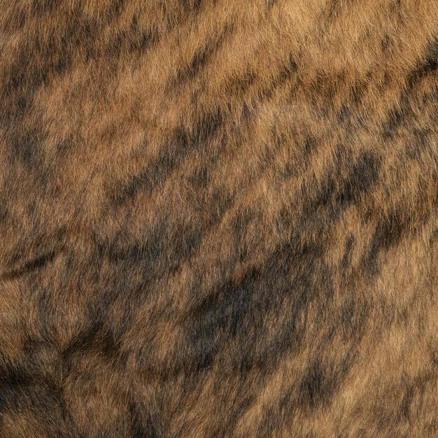 tiger hair 06