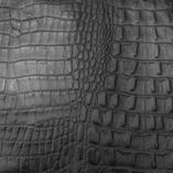 crocodile black 46