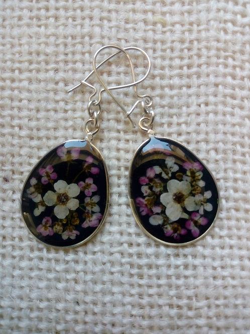 orecchini fondo nero, monachella g.925, fiori: alisso, biancospino