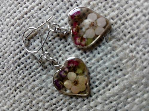 orecchini a cuoricino, trasparenti, monachella argento 925