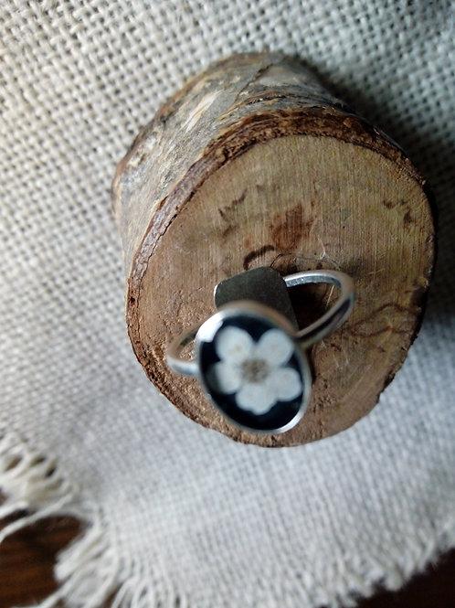 anello regolabile argentatura lucida, nichel free