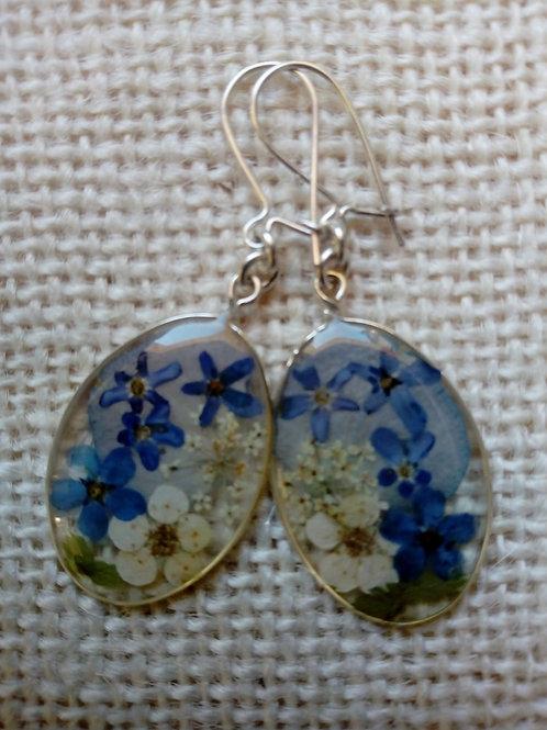 orecchini trasparenti,monachella arg.925,fiori:miosotys,biancospino