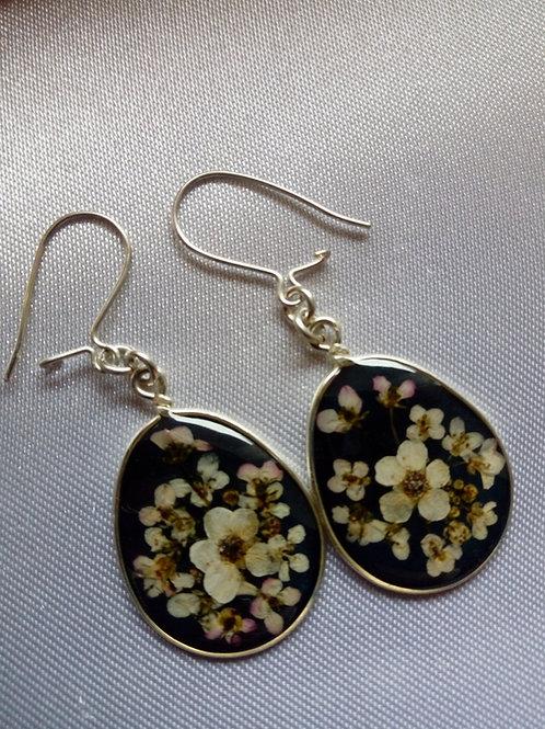 orecchini fondo nero,monachella ag.925,fiori:alisso, biancospino